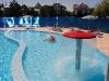 pool-oficial-1